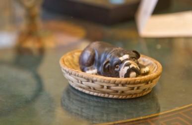 Bulldog in a basket - Japan